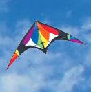 Dual Line Sport Kites
