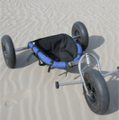 Power Kites & Buggies